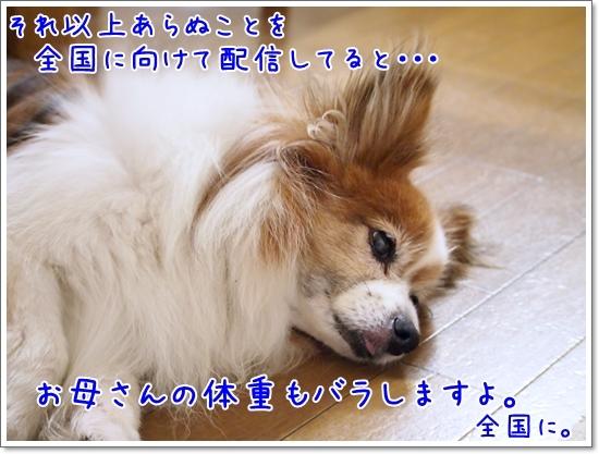d0013149_00140581.jpg