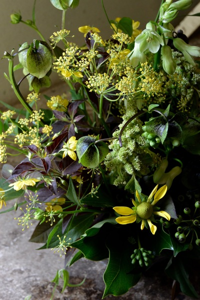 yellow  and  brown 。。。_a0229658_160359.jpg