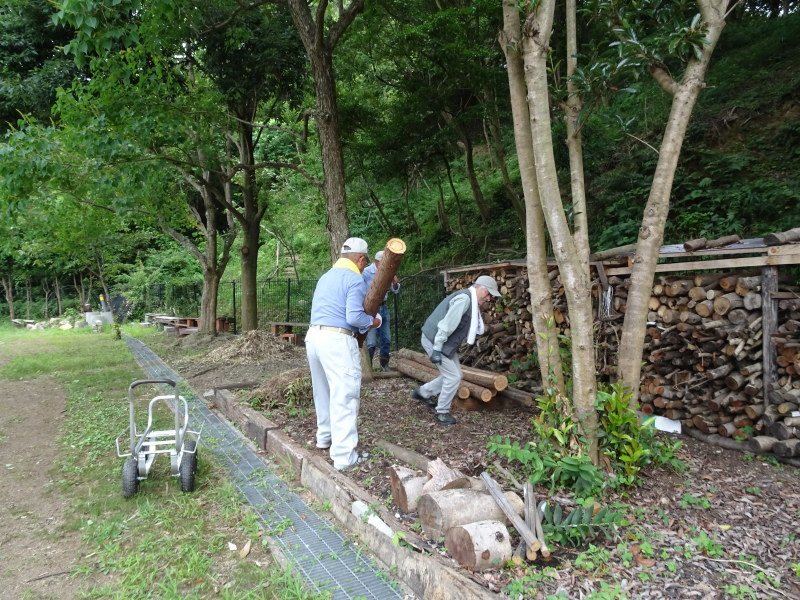 第1回「うみべの森でカブトムシを探そう!」_c0108460_01013857.jpg
