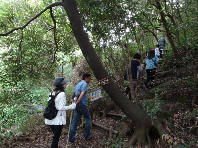 第1回「うみべの森でカブトムシを探そう!」_c0108460_01034355.jpg