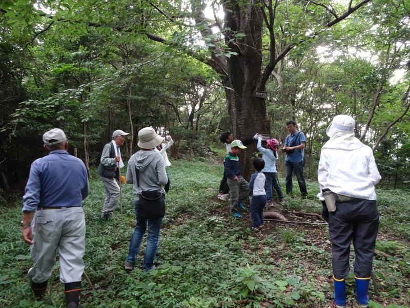 第1回「うみべの森でカブトムシを探そう!」_c0108460_01034539.jpg