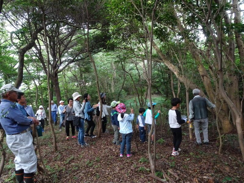 第1回「うみべの森でカブトムシを探そう!」_c0108460_01034775.jpg