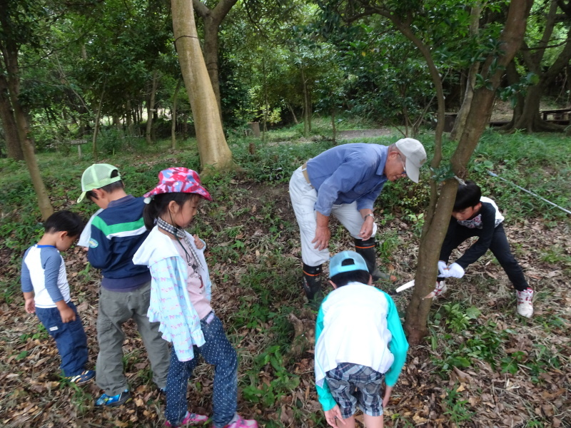 第1回「うみべの森でカブトムシを探そう!」_c0108460_01082619.jpg