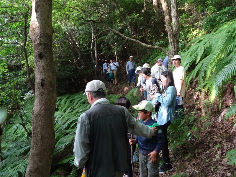 第1回「うみべの森でカブトムシを探そう!」_c0108460_01082856.jpg