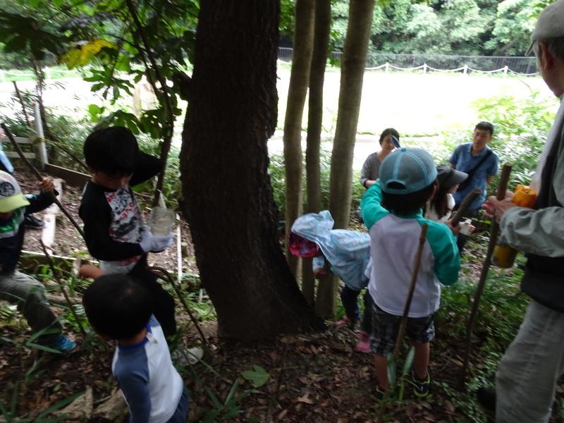 第1回「うみべの森でカブトムシを探そう!」_c0108460_01083253.jpg