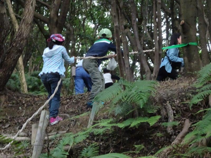 第1回「うみべの森でカブトムシを探そう!」_c0108460_01083417.jpg