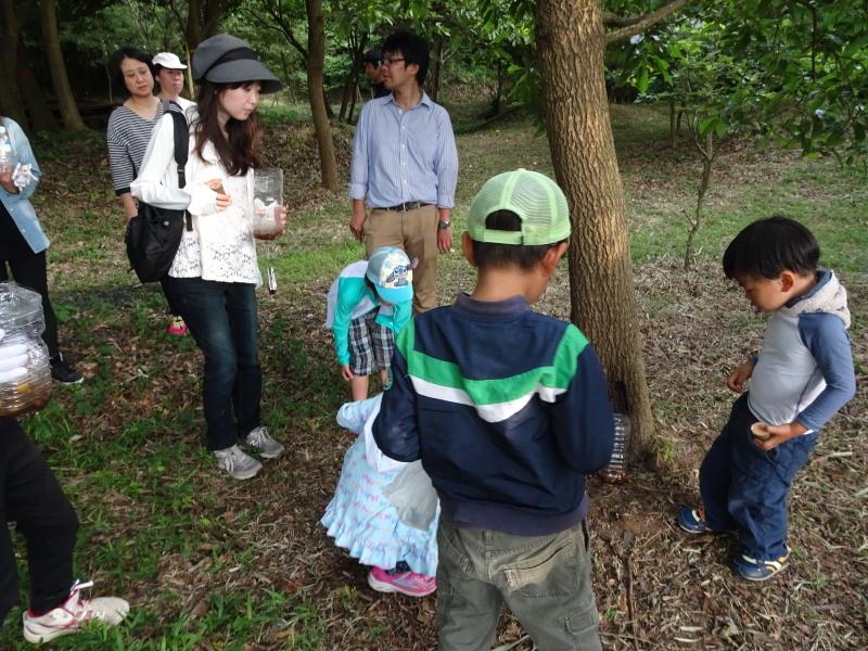 第1回「うみべの森でカブトムシを探そう!」_c0108460_01112128.jpg