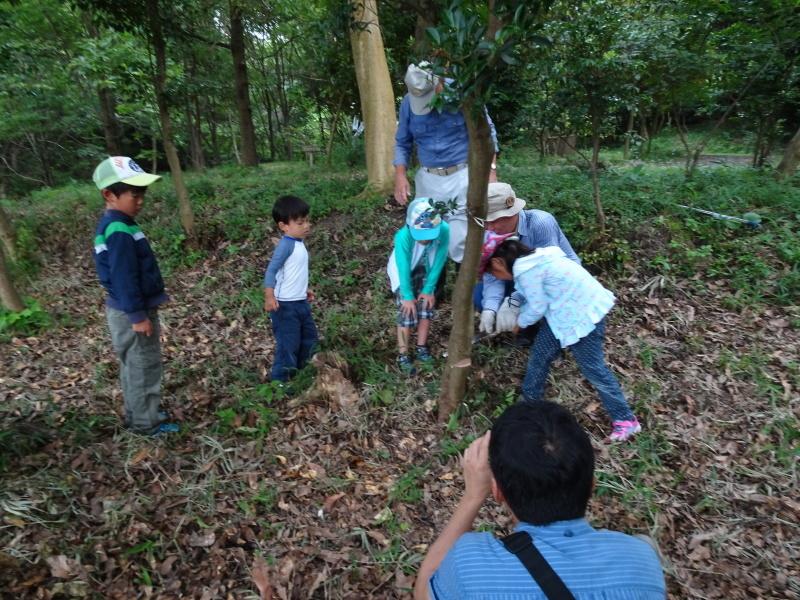 第1回「うみべの森でカブトムシを探そう!」_c0108460_01112407.jpg