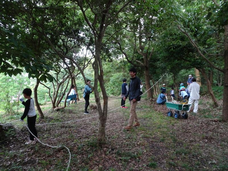 第1回「うみべの森でカブトムシを探そう!」_c0108460_01112688.jpg