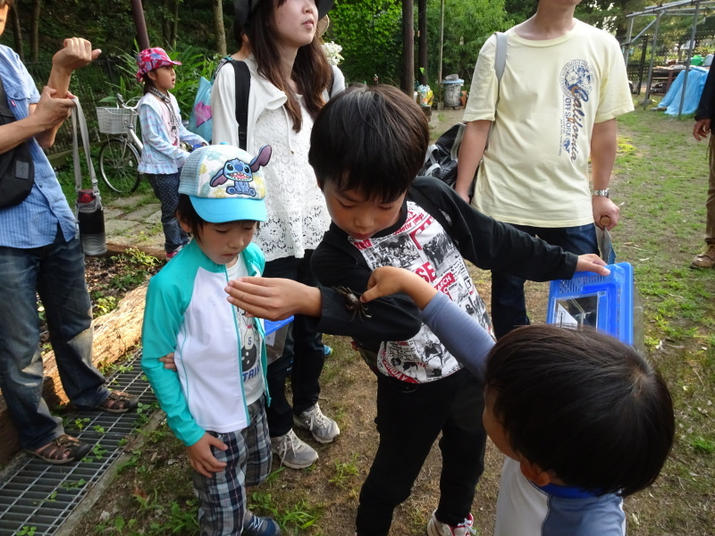 第1回「うみべの森でカブトムシを探そう!」_c0108460_01155244.jpg