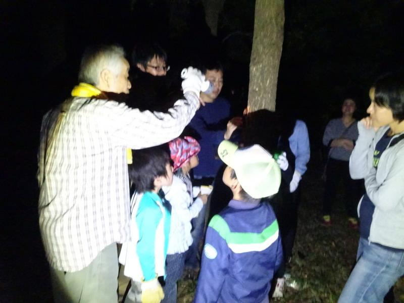 第1回「うみべの森でカブトムシを探そう!」_c0108460_01164777.jpg