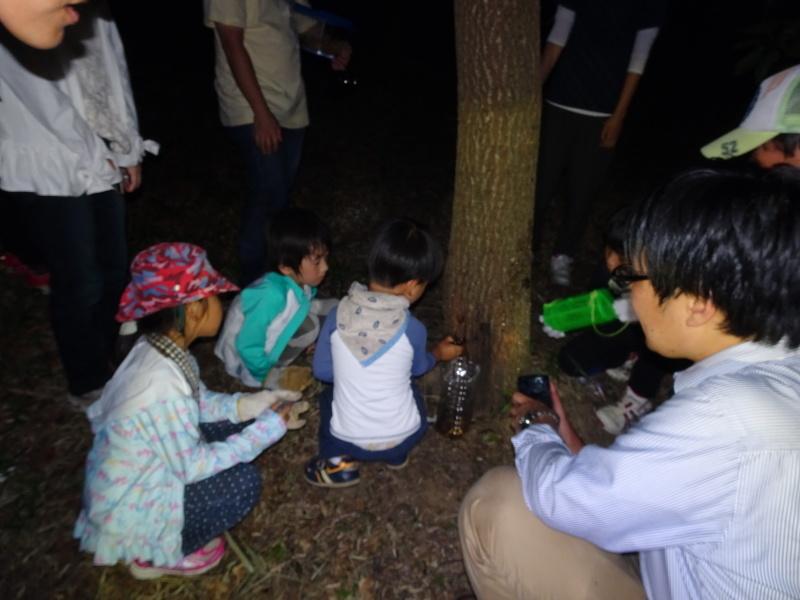 第1回「うみべの森でカブトムシを探そう!」_c0108460_01203729.jpg