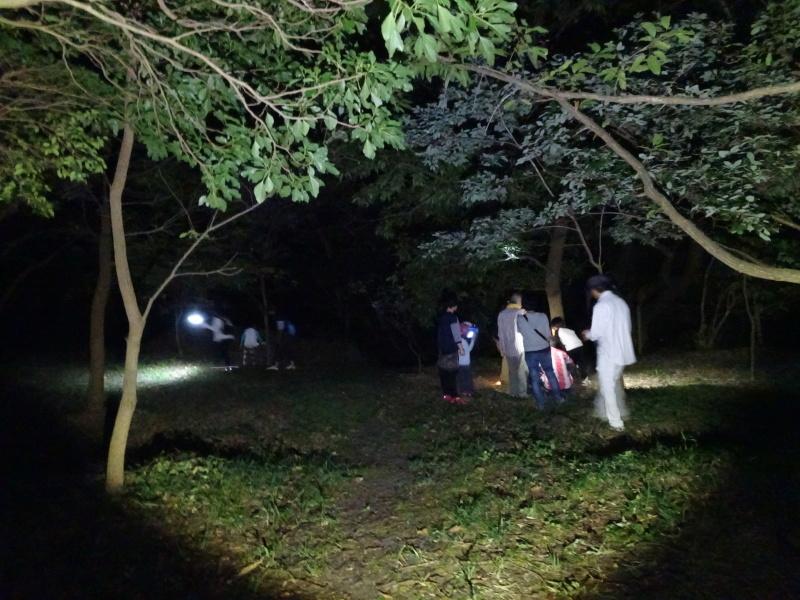 第1回「うみべの森でカブトムシを探そう!」_c0108460_01223138.jpg