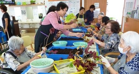【7月の園芸療法】生け花&観葉植物_d0163307_16034294.jpg