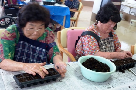 【7月の園芸療法】生け花&観葉植物_d0163307_16052660.jpg