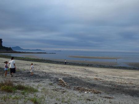 海辺と珈琲ことり イベント「種おちる海辺」展覧会_f0208315_23103539.jpg