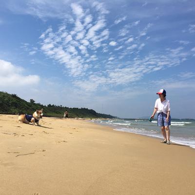 2016 海 (かぁちゃん編)_f0035333_20131664.jpg