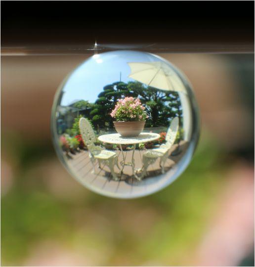 庭で遊ぶ_a0256349_113468.jpg