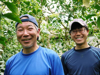 デコポン(肥後ポン) 摘果作業とひも吊り作業 今年も至高のデコポンを育てます その2_a0254656_18403574.jpg