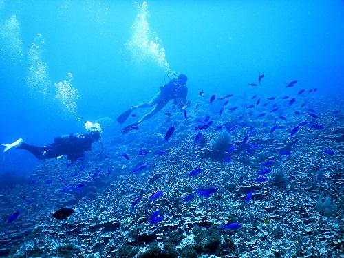 海の日は慶良間へ!!_a0156273_18352487.jpg