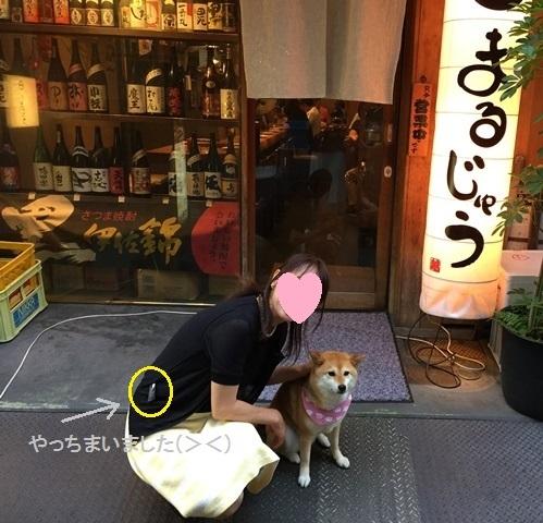 下町のくるみちゃん_a0126590_22524842.jpg