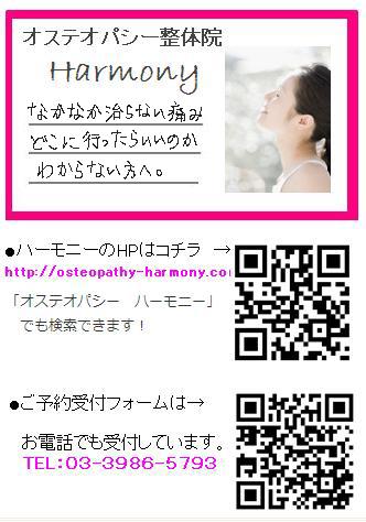 d0063290_10431483.jpg