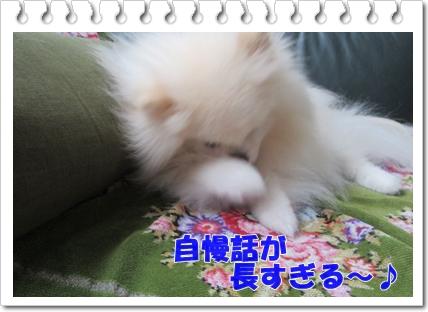b0167519_1304349.jpg