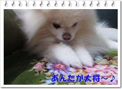 b0167519_131485.jpg