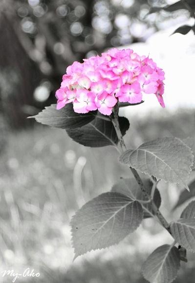 f0133827_22295750.jpg