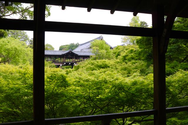 【東福寺 1】京都旅行 - 17 -_f0348831_23034817.jpg