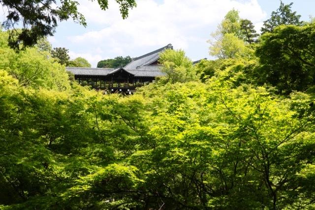 【東福寺 1】京都旅行 - 17 -_f0348831_23034873.jpg