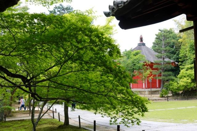 【東福寺 1】京都旅行 - 17 -_f0348831_23041328.jpg