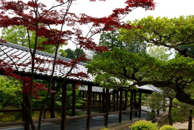 【東福寺 1】京都旅行 - 17 -_f0348831_23042316.jpg