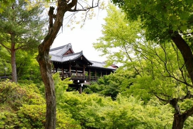 【東福寺 1】京都旅行 - 17 -_f0348831_23044381.jpg