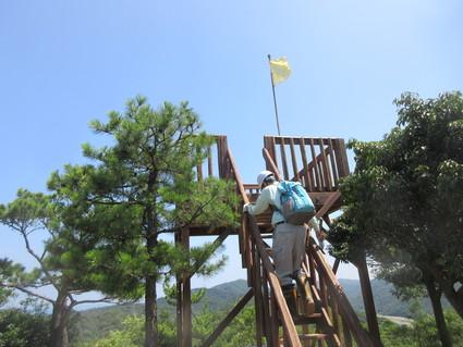 みさき里山クラブ定例活動日・・・孝子の森  by  (ナベサダ)_f0053885_2026147.jpg