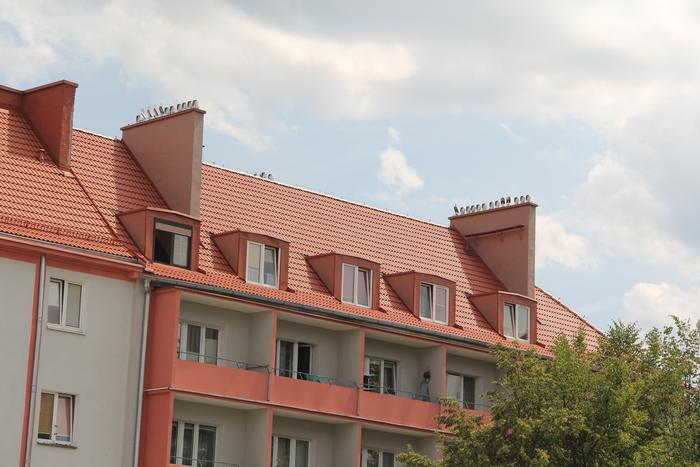 ポーランドのピワ Pila_c0100195_955330.jpg
