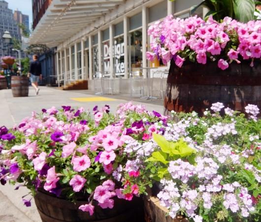 夏のNYの見所の1つ、サウス・ストリート・シーポート_b0007805_543659.jpg