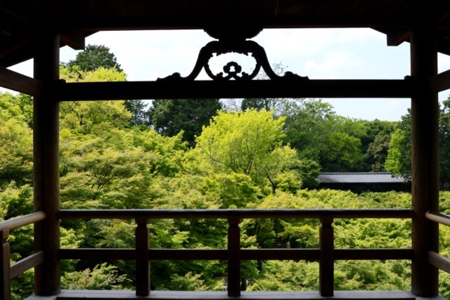 【東福寺 1】京都旅行 - 17 -_f0348831_08110240.jpg