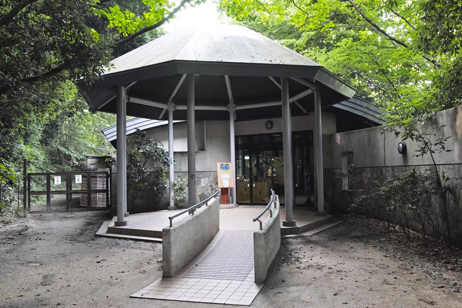sd Quattro で野鳥撮影は楽しめないのか?いえいえ。~松戸市・21世紀の森公園でカワセミを楽しむ(前編)~_c0223825_01091687.jpg