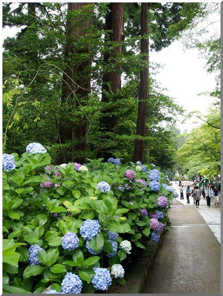 北鎌倉(神社・仏閣境内)_d0123528_185441.jpg