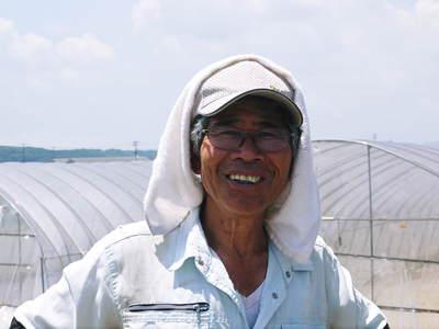 完熟紅ほっぺ 育苗(苗床の様子)と安心・安全なイチゴを育てるための農薬を使わない消毒の話_a0254656_18542986.jpg