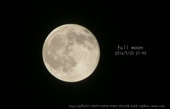c0139375_1132199.jpg