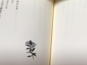 「花がたみ」 春 夏 秋 冬  樹らん著 近代文藝社_e0182479_22227100.jpg