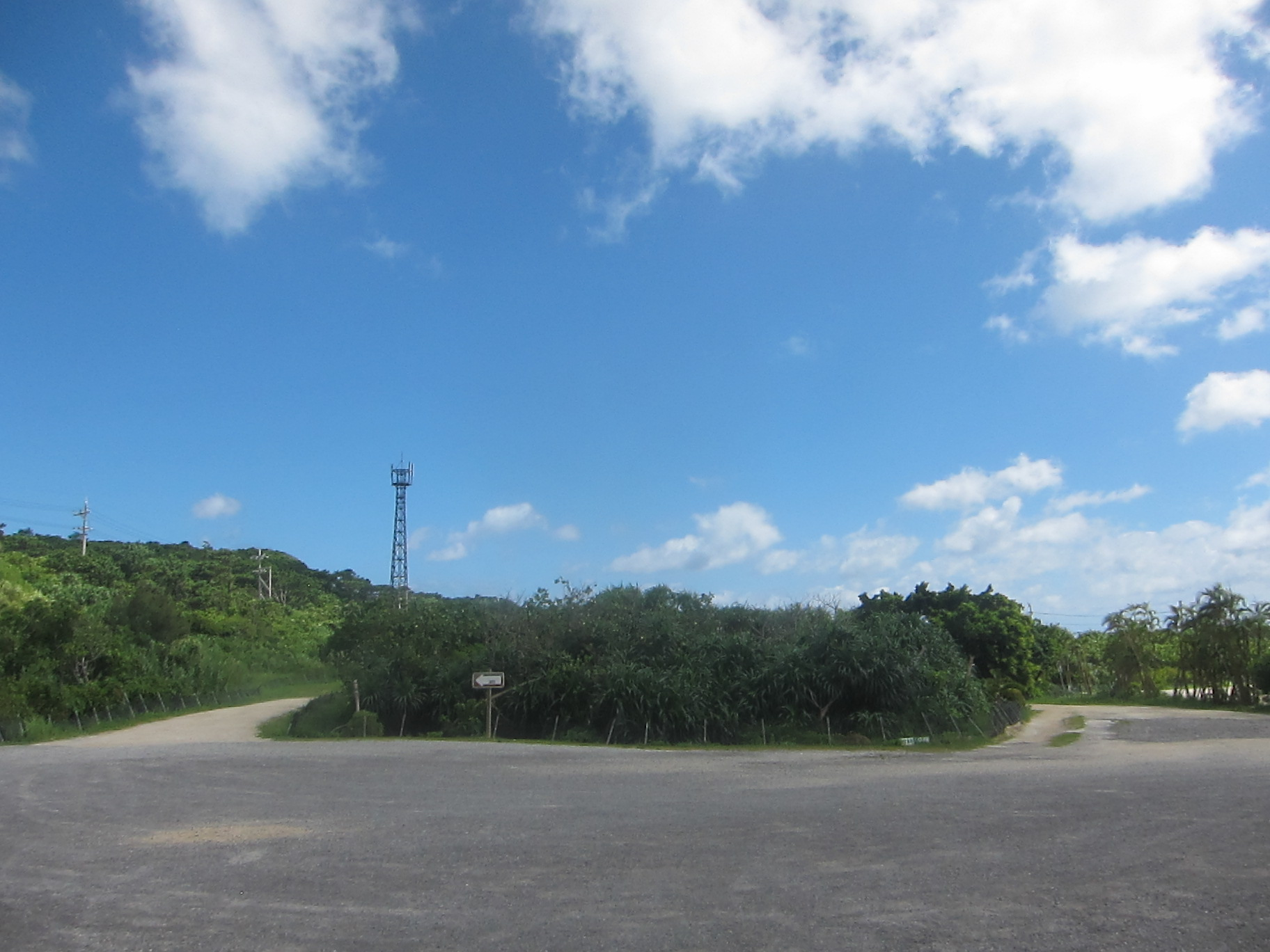 Iriomote Island-3._c0153966_17441321.jpg