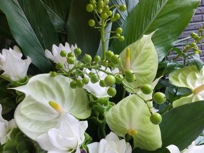 オークリーフ(クルクマとアンスリュームのスタンド装花)_f0049672_13323293.jpg