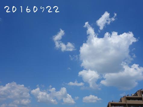 c0265773_1613593.jpg