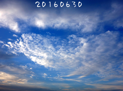 c0265773_1615221.jpg