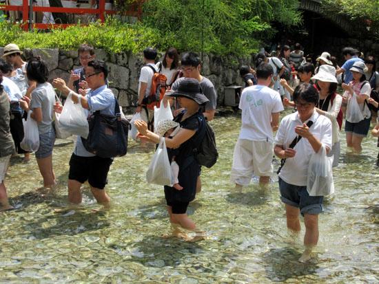 下鴨神社 みたらし祭り_e0048413_1617821.jpg