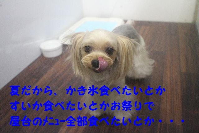b0130018_7183851.jpg