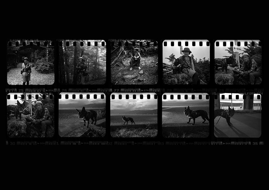 【126フィルム インスタマチックでスクエアフォーマット】 ローライ A26復活への道_c0035245_23014541.jpg
